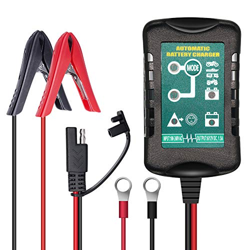 Top 10 Best Motorcycle Battery Chargers 2021